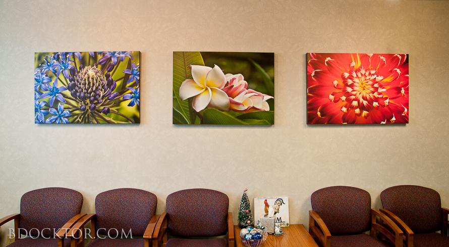 http://www.bdocktorphotography.com/Nature/Nature-Photography-Fine-Art/10570591_DRbdWg#!i=1124241892&k=qrRDNHL