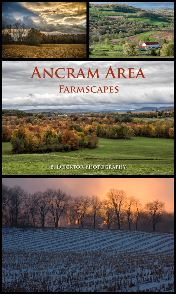 Ancram Area Farmscapes
