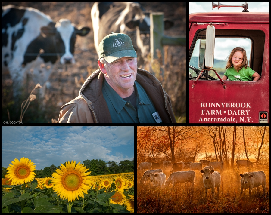 Ancram Farm Photographs